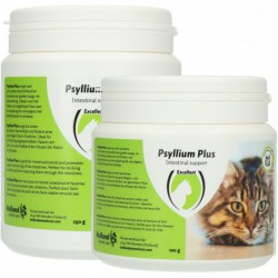 Psyllium Plus 100 gram