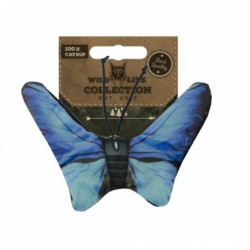 Wild Life Cat Blue Butterfly