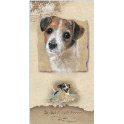Jack Russell Terrier Slimcard