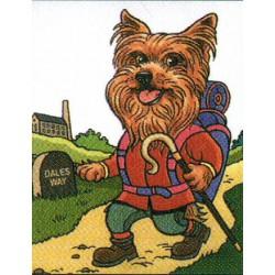 Yorkshire Terrier fun...