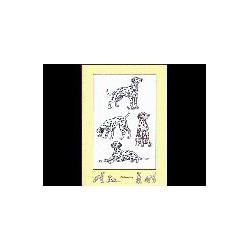 Dalmatische hond Family kaart
