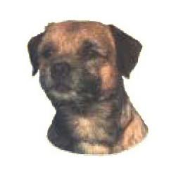 Border Terrier Sticker 14cm