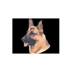 Duitse Herdershond Sticker...