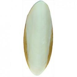 Voeding en mineralen - Set Sepia-Schalen