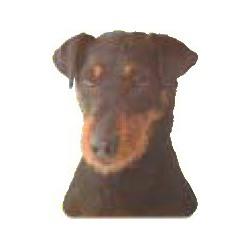 Jacht Terrier Sticker 14cm