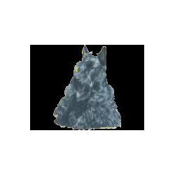 Schotse Terrier Sticker 14cm