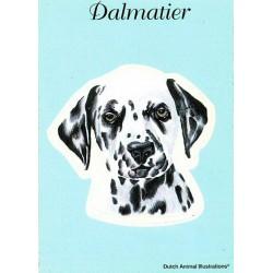 Dalmatische Hond Sticker...