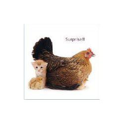Surprise!! blanco kaart