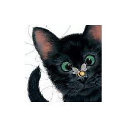 Peek-a-boo Black Cat blanco...