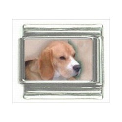 Beagle schakel OP is OP