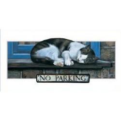 No Parking Slimcard