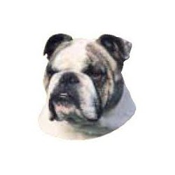 Engelse Bulldog Stickers 7cm