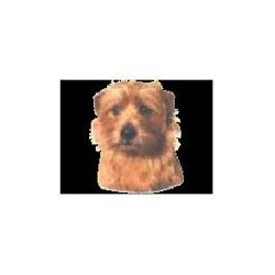Norfolk Terrier Stickers 14cm
