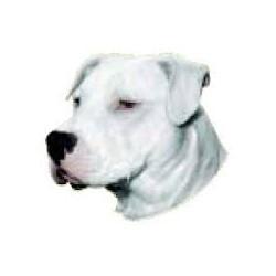 Dogo Argentino /...
