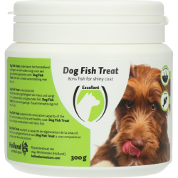 Dog Fish Treat