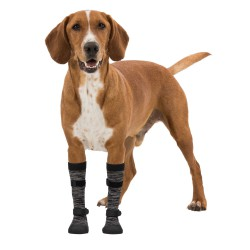 Poot-Bescherming Walker Socks