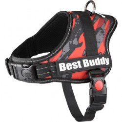 Best Buddy Pluto harnas...