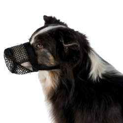 Hondenslip 20-25cm beige