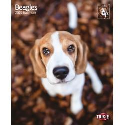 Beagle kalender 2022